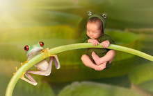 Newborn Baby Dressed As A Frog