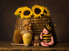 Baby Bee And Antique Beehive