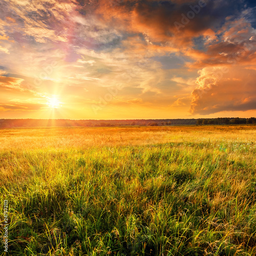 Canvas Prints Culture Summer landscape with uncultivated field and beautiful sunset above it.