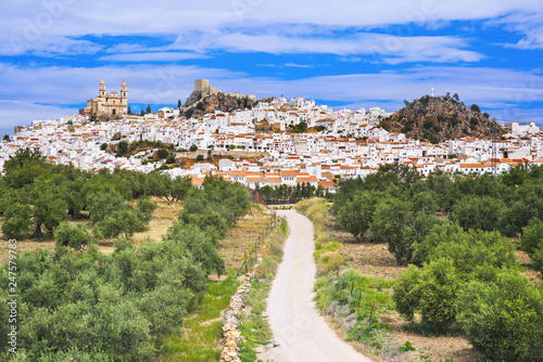 View of Olvera village, one of the beautiful white villages (Pueblos Blancos) of Canvas Print