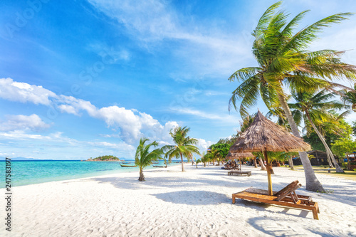 Empty sunny Koh Lipe Beach with tall palms and beach bungalows Canvas Print