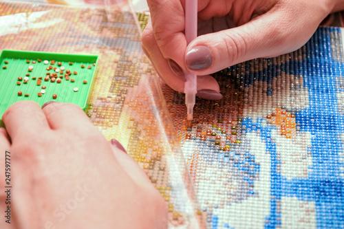 Girl collect diamond painting Wallpaper Mural