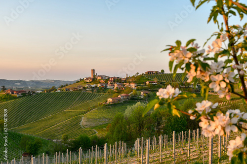 Panoramic view of vineyard hills with ancient village on the top at sunset in sp Wallpaper Mural