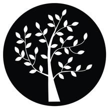 Tree Silhouette In Black Circle