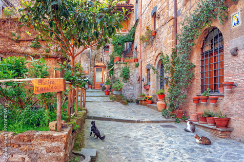Fototapety, obrazy: Beautiful alley in old town, Italy, Europe