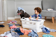 Mischievous Boy And Dog Make Mess With Laundry