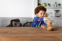 Boy And Dog Stealing Cookies T...