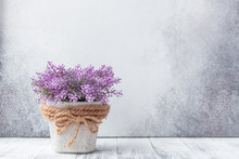 Small Purple Flowers In Gray C...