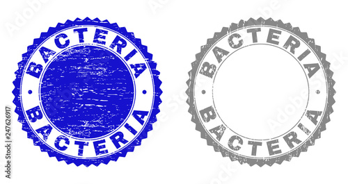 Fotografie, Obraz  Grunge BACTERIA stamp seals isolated on a white background