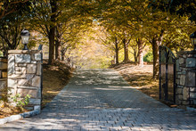 Gated Open Entrance With Road During Golden Autumn In Rural Countryside In Virginia Estate With Lanterns And Cobblestone Path Street With Trees