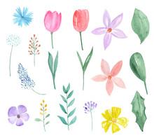 Watercolor Set Of Spring Flowe...