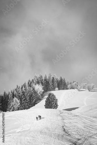 Photographie  Beautiful ski slope in the French Alps in Savoy