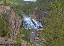 Gibbons Falls Yellowstone