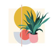 Plant Illustration. Potted Hou...