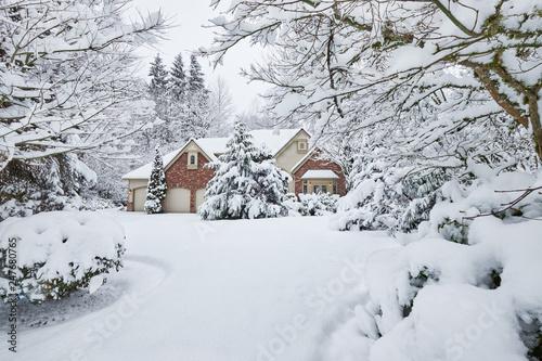 Fotografija owland snow, leaving many snowed in