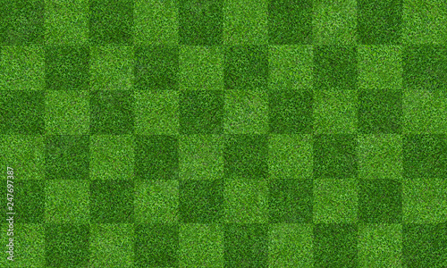 In de dag Groene Green grass field background for soccer and football sports. Green lawn pattern and texture background. Close-up.