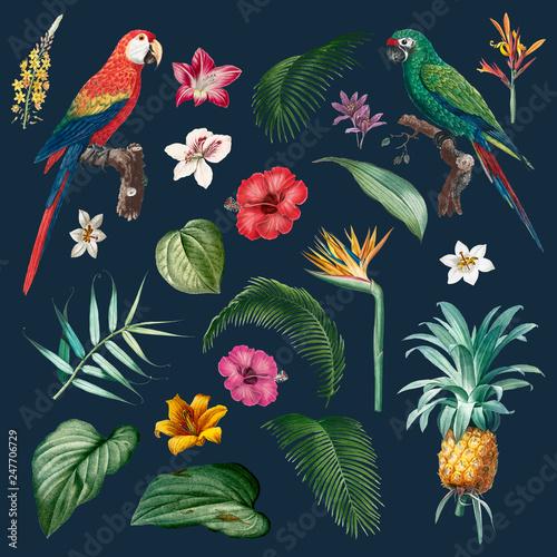 Macaw foliage illustration Wall mural