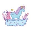 beautiful little unicorn in the clouds