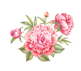 Naklejka Do sypialni Red peony flower. Watercolor illustration. Botanical design.