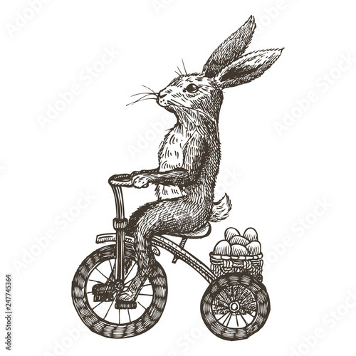Tableau sur Toile Hand drawn bunny riding tricycle with Easter eggs, vector