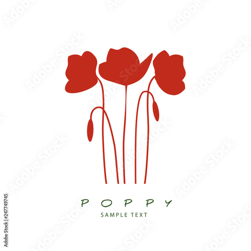 Silhouette of stems, leaves and poppy flowers isolated. Vector Illustration - 247749745