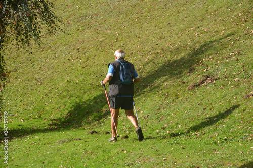 Anciano caminando por el monte Canvas Print
