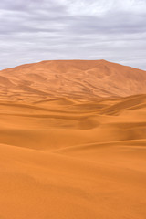 Fototapeta na wymiar The beauty of the sand dunes in the Sahara Desert in Morocco