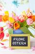 canvas print picture - Bunte Tulpen  im Fruehling
