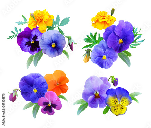 Stickers pour portes Pansies Set of bouquets of pansies and marigolds Isolated on a white background, summer flowers, decorative composition.