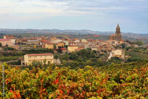 Autumn vineyards near Elvillar, Spain