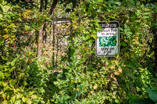 Poison Ivy Sign Posted On Wire Fence, Stay On Trail, In Wooded Area.
