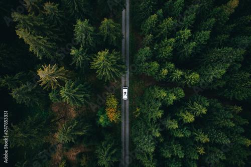 Photo  Abenteuer aus der Luft in einem Wald mit dem Camper