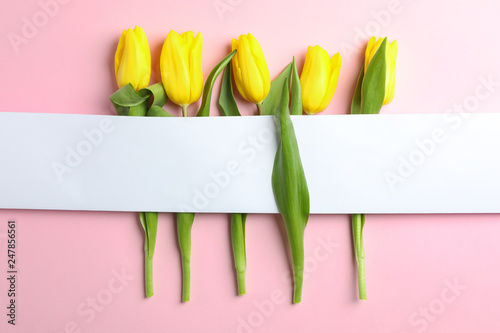 Fotografía  Beautiful tulips with blank card on light background, top view
