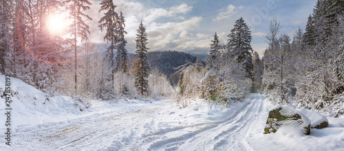 Fototapeta Winter landscape, panorama, banner - view of the snowy road in the winter mountain forest obraz
