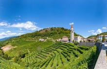 Panoramica Sulle Vigne Di Prosecco Nelle Colline Di Rollè - Valdobbiadene, Veneto.