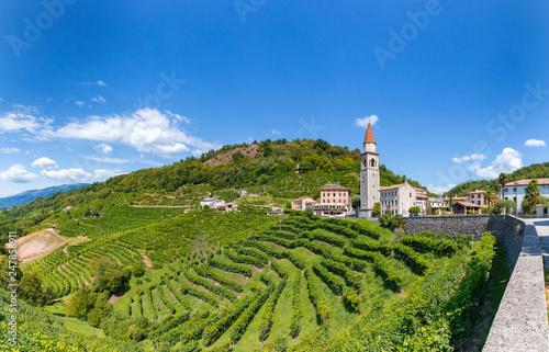 Fotografie, Obraz  Panoramica sulle vigne di Prosecco nelle colline di Rollè - Valdobbiadene, Veneto