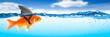 Goldfish With Shark Fin Costume - Brave Ambitious Entrepreneur/ Business Vision Concept