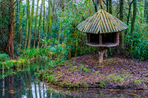 Fotografie, Tablou wooden tree hut on the river side in a tropical looking swamp landscape