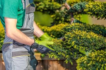 Obraz na SzkleGardener Checking on Plants