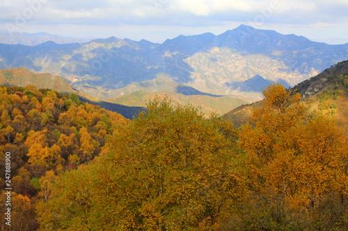 Deurstickers Herfst mountain natural scenery