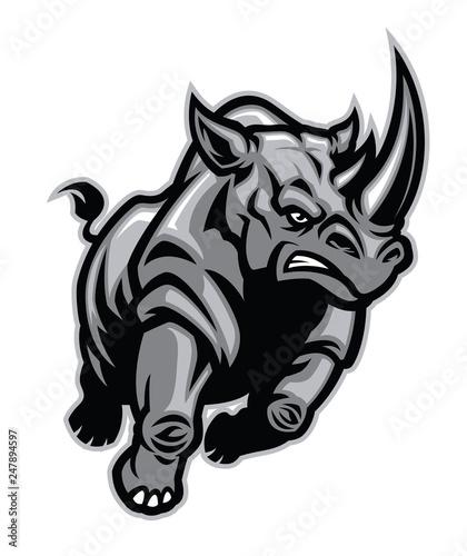Cuadros en Lienzo charging angry rhino attacking