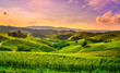 canvas print picture - Langhe vineyards view, Castiglione Falletto and La Morra, Piedmont, Italy Europe.