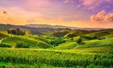 Langhe Vineyards View, Castigl...