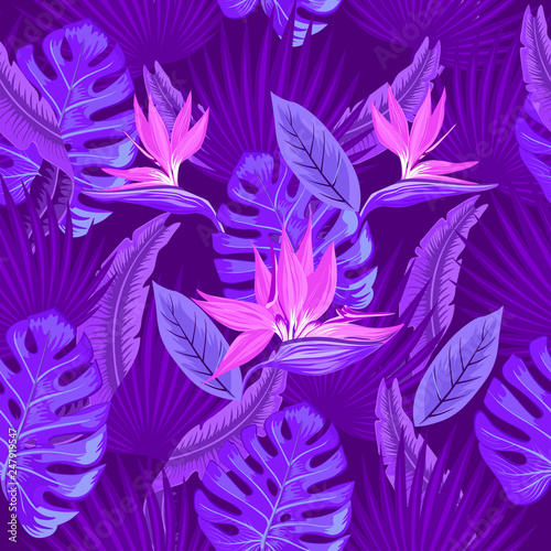 Vector Seamless Tropical Pattern Neon Tropical Foliage With Leaves Of Monsters Palm Leaves Bird S Paradise Flower Trend Design Buy This Stock Vector And Explore Similar Vectors At Adobe Stock Adobe Stock Summer exotic botanical foliage fluorescent design with tropic plants for fabric, textile. vector seamless tropical pattern neon