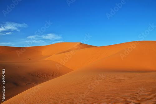 Foto op Aluminium Koraal Algeria, Algiers, algerian, desert