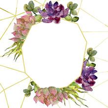 Jungle Botanical Succulent Floral Botanical Flower. Watercolor Background Illustration Set. Frame Border Ornament Square.
