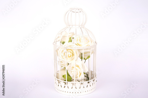 Fotografie, Obraz  Cage with white roses on white background