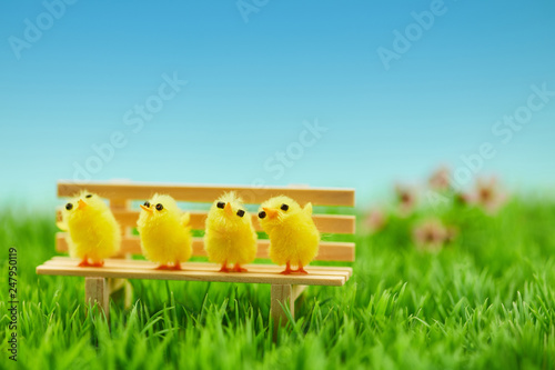 Fotografia  Küken Familie auf Bank als Ostern Dekoration