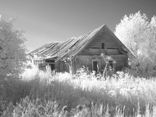 Infra Red Photography IR Photo