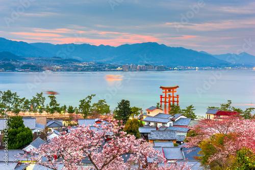 Keuken foto achterwand Kersenbloesem Miyajima Island, Hiroshima, Japan in spring